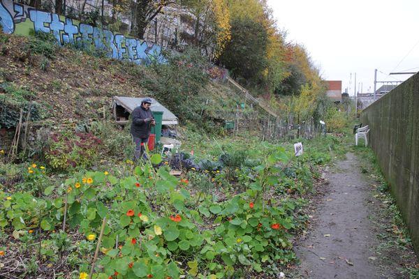 13_11_23_jardin_etterbeek_07.jpg