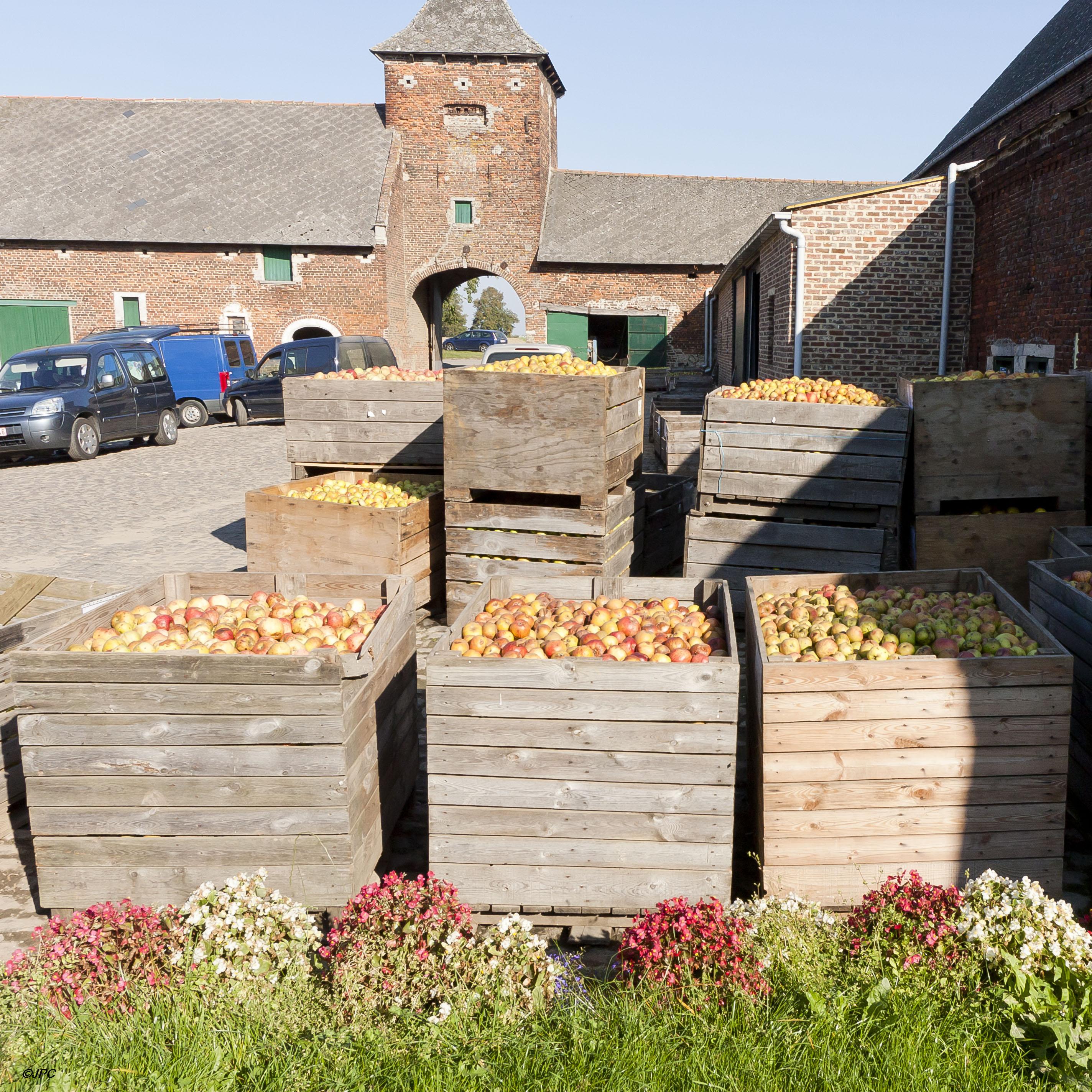 R colte de pommes pour la fabrication de jus flore pomone - Machine pour ramasser les pommes ...